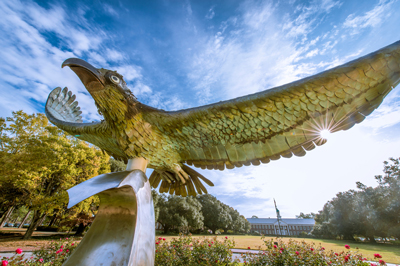 Seahawk Statue